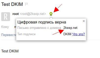 Результаты теста DKIM в Yandex